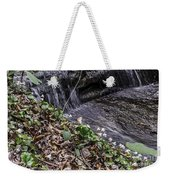 On The Banks Of The Rapids Weekender Tote Bag
