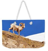On The Mountain Weekender Tote Bag