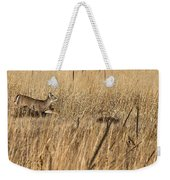 On The Run 2 Weekender Tote Bag by Thomas Young