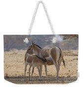 Onager Equus Hemionus 2 Weekender Tote Bag