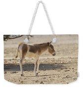 Onager Equus Hemionus Weekender Tote Bag