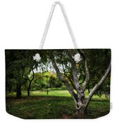 One Autumn Day - Central Park - Nyc Weekender Tote Bag