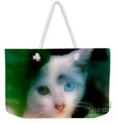One Blue One Green Cat In New Olreans Weekender Tote Bag