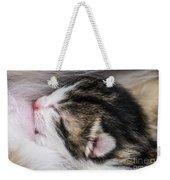 One Day Old Kitten Breastfeeding Weekender Tote Bag