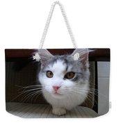 One Legged Kitty Weekender Tote Bag