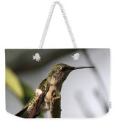 One Out Of Place - Hummingbird Weekender Tote Bag
