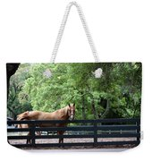 One Very Pretty Hilton Head Island Horse Weekender Tote Bag