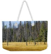 Open Meadow Glacier National Park Weekender Tote Bag