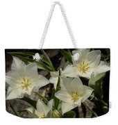Open Tulip Time Weekender Tote Bag