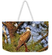 Opulent Osprey Weekender Tote Bag by Al Powell Photography USA