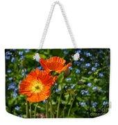 Orange And Blue - Beautiful Spring Orange Poppy Flowers In Bloom. Weekender Tote Bag