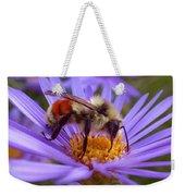 Orange-banded Bee Weekender Tote Bag