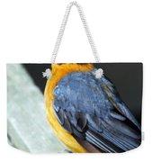 Orange Breasted Bird Portrait Weekender Tote Bag