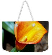 Orange Calla Lilly Flower In The Garden Weekender Tote Bag