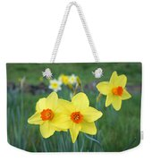 Orange Daffodils Flowers Spring Garden Weekender Tote Bag