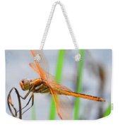 Orange Dragonfly On The Water's Edge Weekender Tote Bag