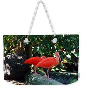 Orange Feathered Friends Weekender Tote Bag