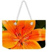 Orange Slices Weekender Tote Bag