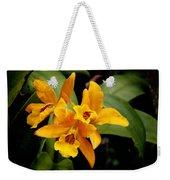 Orange Spotted Lip Cattleya Orchid Weekender Tote Bag by Rudy Umans