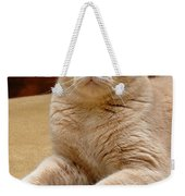 Orange Tabby Cat Weekender Tote Bag