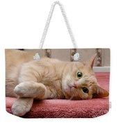 Orange Tabby Cat Lying Down Weekender Tote Bag