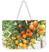 Orange Trees With Fruits On Plantation Weekender Tote Bag
