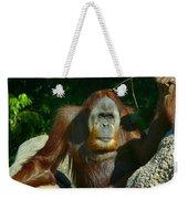Orangutan Scratches With Stick Weekender Tote Bag