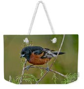 Orchard Oriole Weekender Tote Bag