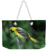 Orchard Oriole Icterus Spurius Juvenile Weekender Tote Bag
