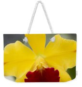 Orchid Beauty - Cattleya - Pot Little Toshie Mini Flares Mericlone Hawaii Weekender Tote Bag by Sharon Mau