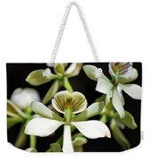 Orchid Encyclia Fragrans Weekender Tote Bag