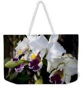 Orchid Laeliocattleya Lucie Hausermann With Buds 4074 Weekender Tote Bag