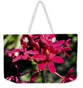 Orchid Study V Weekender Tote Bag
