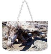 Oregon Beach - Driftwood Trunk Weekender Tote Bag