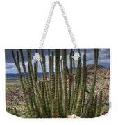 Organ Pipe Cactus The Visitor 1 Weekender Tote Bag