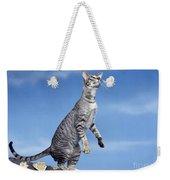Oriental Cat Weekender Tote Bag