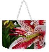 Oriental Hybrid Lily Named Dizzy Weekender Tote Bag