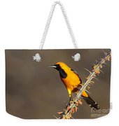 Oriole On Ocotillo Weekender Tote Bag