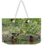 Orioles At The Pool Weekender Tote Bag