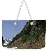 Orphaned Snow Field Weekender Tote Bag