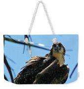Osprey 1 Weekender Tote Bag