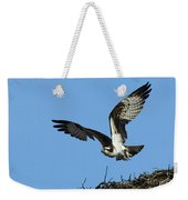 Osprey 9 Weekender Tote Bag