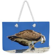 Osprey Eating Lunch Weekender Tote Bag