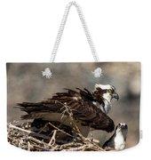Osprey Family Huddle Weekender Tote Bag