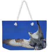 Osprey Grace And Beauty Weekender Tote Bag