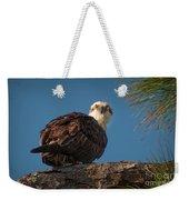 Osprey In Pine 3 Weekender Tote Bag