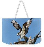 Osprey Mating Weekender Tote Bag