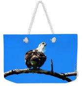 Osprey On A Branch Weekender Tote Bag