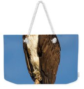 Osprey Perched In Yellowstone National Park Weekender Tote Bag