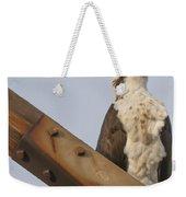 Osprey -seahawk Weekender Tote Bag